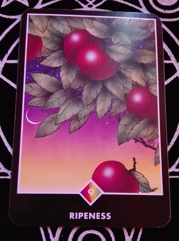 OSHO禅タロットのRIPENESS(熟すこと)