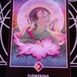 OSHO禅タロットのFLOWERING(開花)