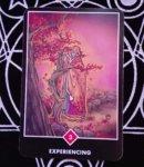 EXPERIENCING(体験している)