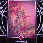 OSHO禅タロットのEXPERIENCING(体験している)