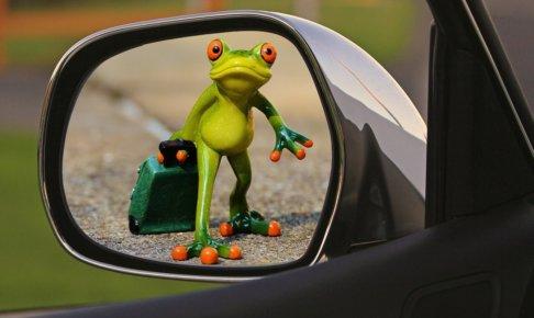 サイドミラーに映った旅立つカエル