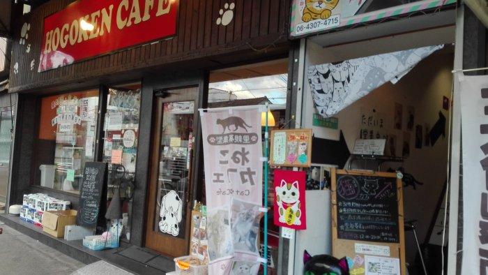 猫カフェマンチカンの下はhogoken cafe