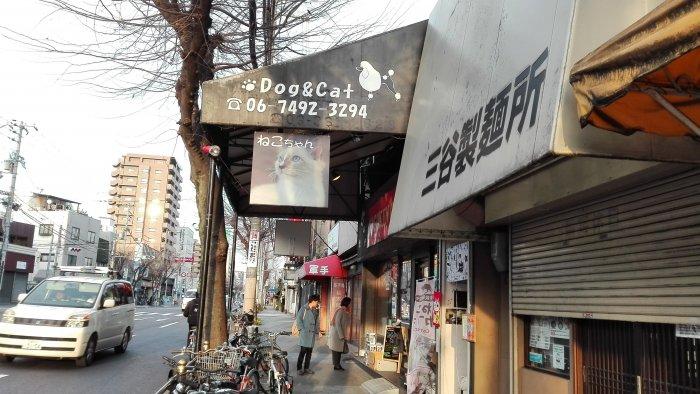 鶴橋駅から千日前通を東へ進むとマンチカン鶴橋店の目印