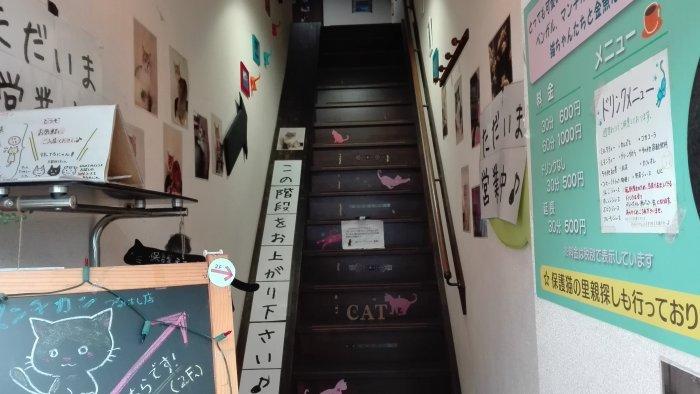 マンチカン鶴橋店の階段
