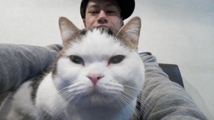 インカメラにして撮らせてもらった猫ちゃん