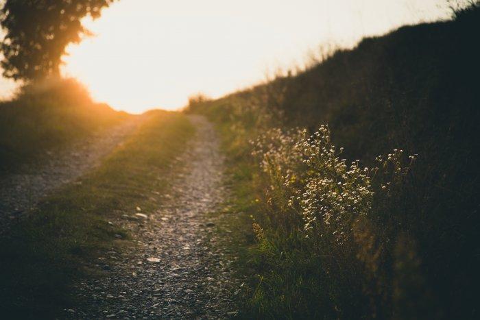 夕日に照らされる一本道