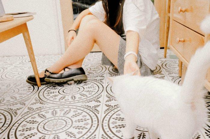 猫と遊ぶ一人の女性